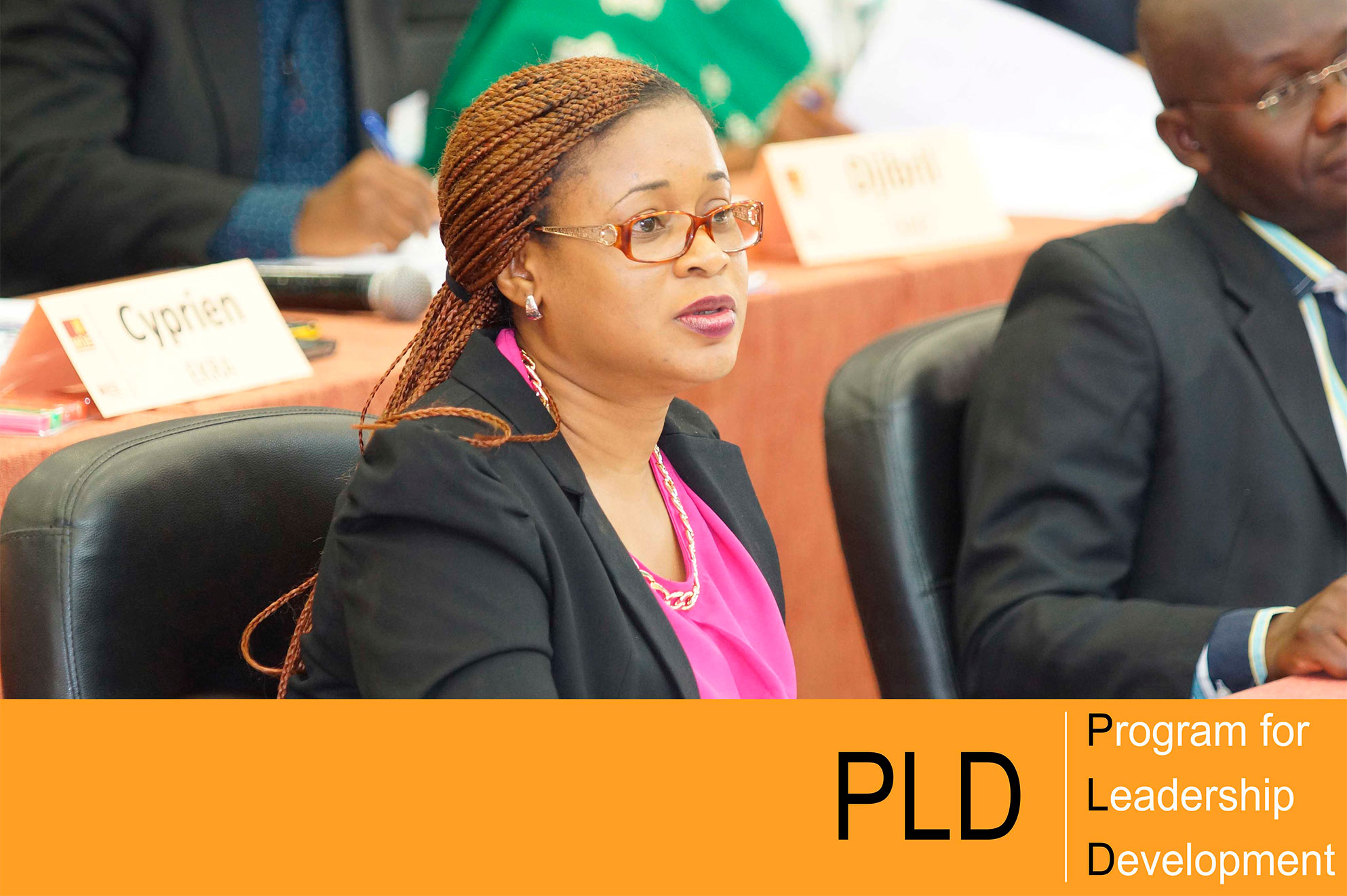 Program for Leadership Development (PLD)
